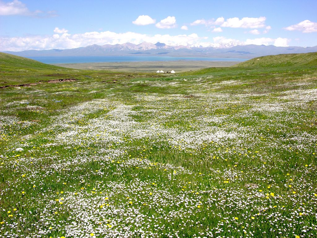 Son Kul lake in Kyrgyzstan