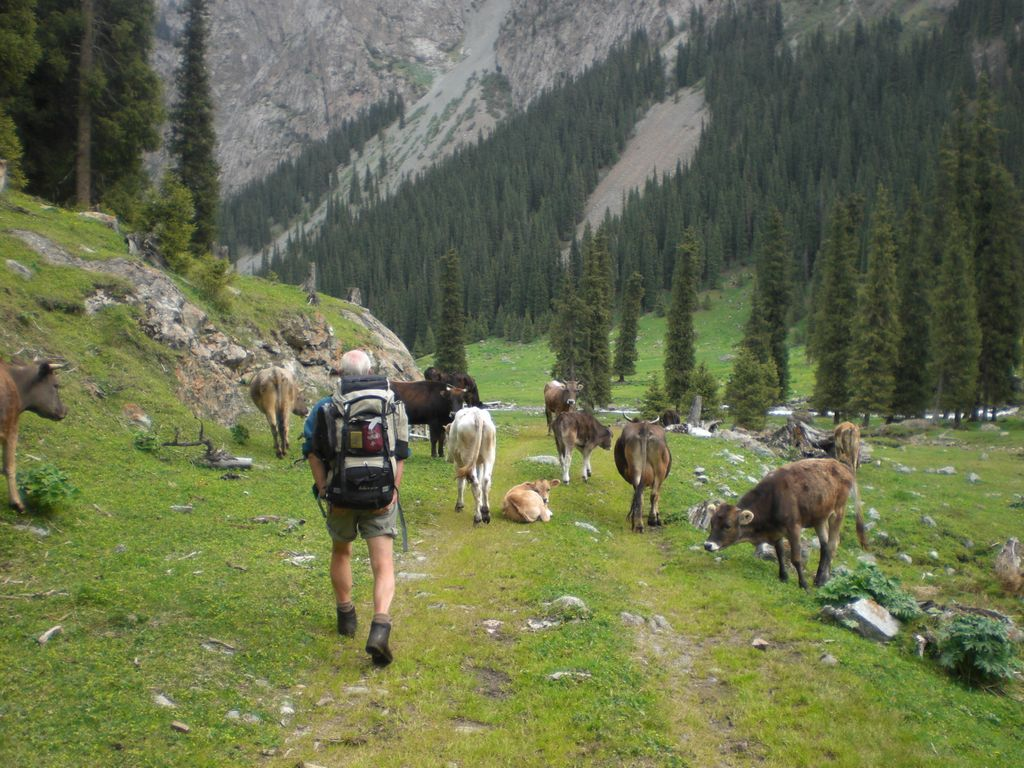 Trekking/Hiking Tour in Kyrgyzstan Ala Too Travel